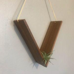 Custom Artisan Wooden V-holder With Tiny Air Plant